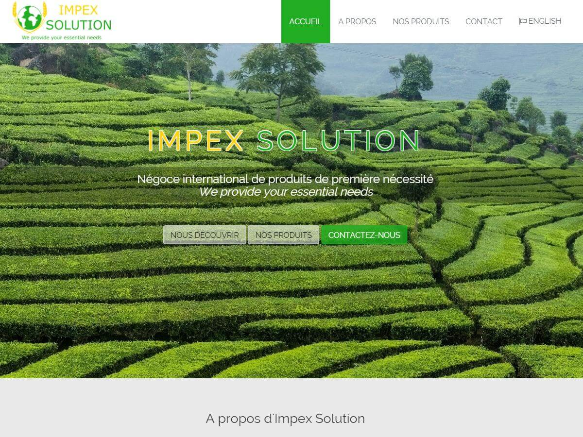 Logo d'Impex Solution